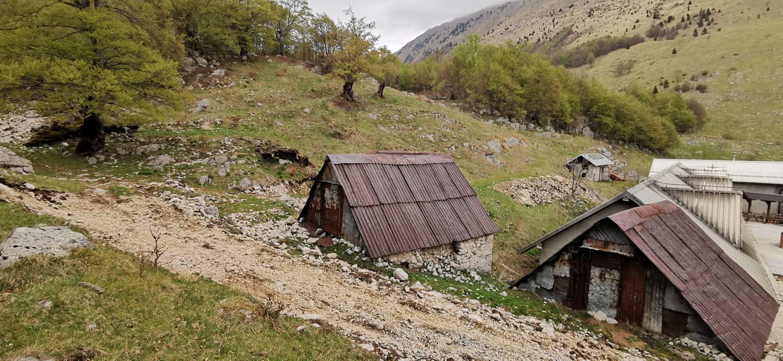 Drežniške Ravne - Planina Zaprikraj - glavna slika